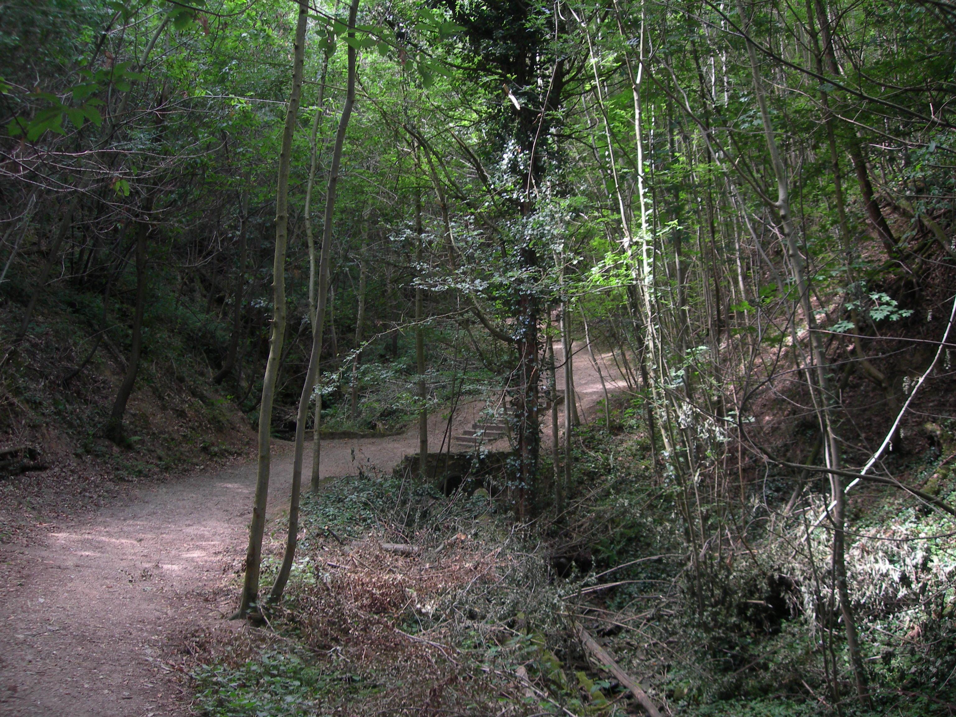 Gorges du Ruisseau Vatancul