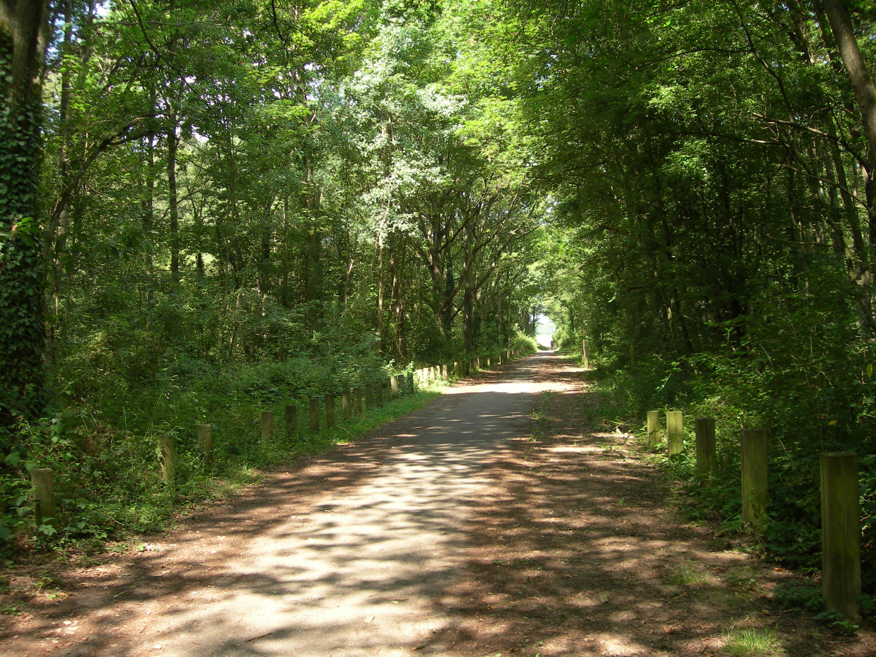 Chemin de Favreuse