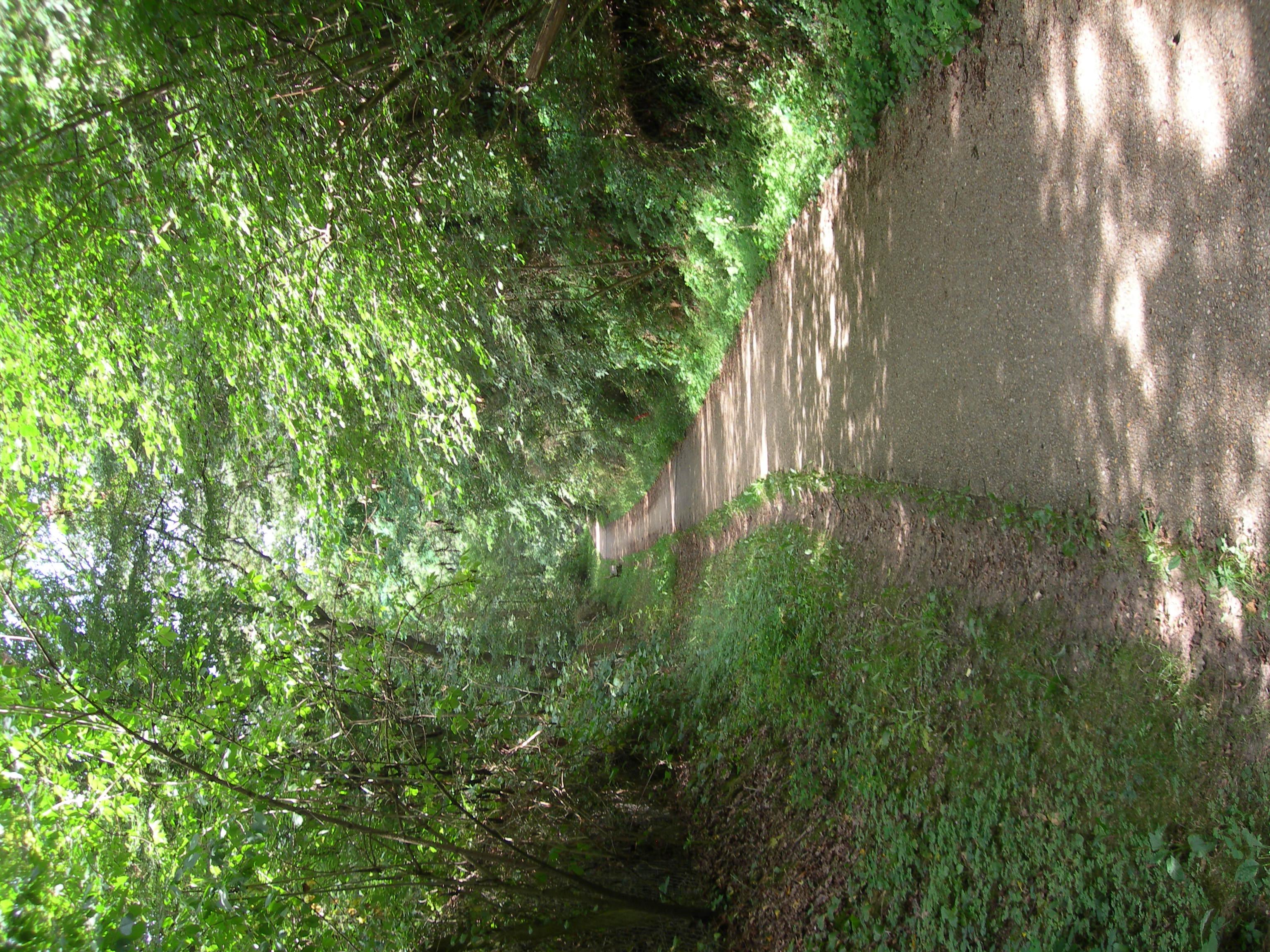 Chemin du Moulon